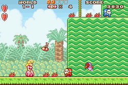 Super Mario Advance - Super Mario USA + Mario Brothers